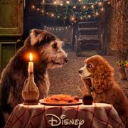 Remake de La Dama y el Vagabundo: póster oficial recrea icónica escena de la película